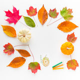 Autumn frame composition of colorful leaves and pumpkins. Royalty Free Stock Photography