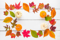 Autumn frame composition of colorful leaves and pumpkins. Royalty Free Stock Image