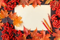 Autumn frame composition with fallen leaves on wooden with copy space for text. Thanksgiving, Halloween, seasonal fall concept fla. Autumn frame composition with royalty free stock photos