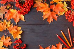 Autumn frame composition with fallen leaves on wooden with copy space for text. Thanksgiving, Halloween, seasonal fall concept fla. Autumn frame composition with stock photos