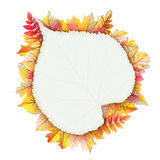 Autumn frame with fall leaf. EPS 10 Stock Image
