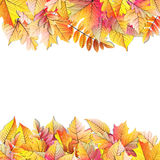 Autumn frame with fall leaf. EPS 10 Royalty Free Stock Image