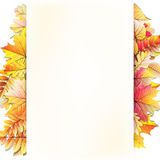Autumn frame with fall leaf. EPS 10 Stock Images