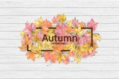 Autumn frame with fallen leaves. On a wooden background stock illustration