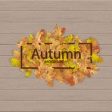 Autumn frame with fallen leaves. On a wooden background royalty free illustration