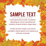 Autumn Frame from Falling Foliage. Design Vector Royalty Free Stock Photo
