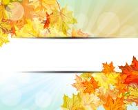 Autumn  Frame Stock Photos