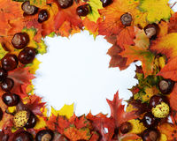 Autumn frame stock photo