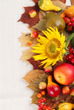 Autumn frame with fruits,pumpkins and sunflowers Royalty Free Stock Image