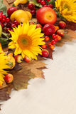 Autumn frame with fruits and sunflowers Stock Photos