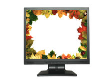 Autumn frame in LCD on white Royalty Free Stock Photo