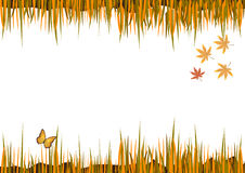 Autumn frame with leaves. Beautiful autumn frame with leaves and butterfly vector illustration