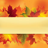 Autumn frame with leaves. Fall leaf background Stock Photo