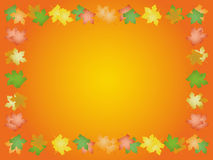 Autumn frame from leaves of maple. Autumn frame from coloful leaves of maple royalty free illustration