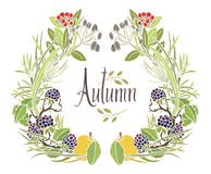 Autumn frame of leaves, twigs and apples. Design card with blackberry royalty free illustration