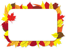 Autumn frame with leaves Stock Photography