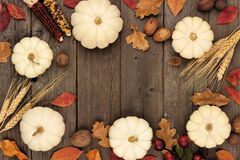 Autumn frame with leaves and white pumpkins over wood Stock Photos