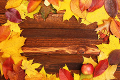 Autumn frame with leaves Royalty Free Stock Image