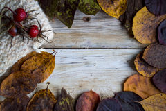 Autumn frame, leaves, wool and dog-rose fruit. On a wooden table royalty free stock photography