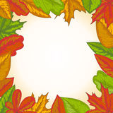 Autumn frame Royalty Free Stock Photo