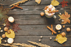 Autumn frame made of dried fall leaves, mug of cocoa with marshmellows, nuts, cinnamon, plaid, apples. Top view on brown wood back Royalty Free Stock Images