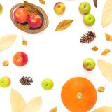 Autumn frame made of fall leaves, pine cones, apples and pumpkin on white background. Thanksgiving day. Flat lay, top view Royalty Free Stock Images