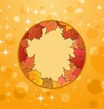 Autumn frame made in maples Royalty Free Stock Image