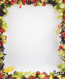 Autumn frame with wild fruits and leaves Stock Photos
