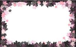 Autumn frame: maple leaf. Royalty Free Stock Photography