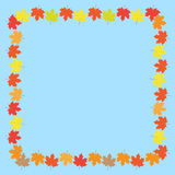 Autumn Frame With Maple Leaves au-dessus du fond blanc Illustration de vecteur Images stock