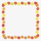 Autumn Frame With Maple Leaves sobre el fondo blanco Ilustración del vector Imagen de archivo libre de regalías