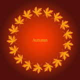 Autumn frame with maple leaves. Vector illustration royalty free illustration