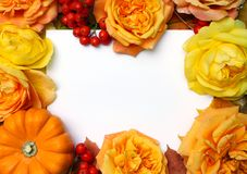 Autumn frame. Maple, oak leaves, orange pumpkin, roses, rowan berries and empty white paper card. Fall and Thanksgiving concept. F Royalty Free Stock Images