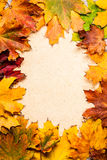 Autumn frame on paper Royalty Free Stock Image