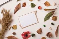 Autumn frame with paper card Stock Image