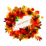 Autumn frame with place for your text Royalty Free Stock Photos