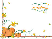 Autumn Frame with pumpkin and leaves. Autumn frame with pumpkins and autumn yellow leaves Stock Photo