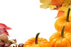 Autumn frame with pumpkins Royalty Free Stock Photos