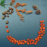Autumn frame, pumpkins, cones, acorn. Closeup still life of cedar, arborvitae leaf branch,  heap of tiny red and orange pumpkin pods and acorns, two pine cones Royalty Free Stock Photography
