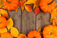 Autumn frame of pumpkins and leaves against rustic wood Stock Photo
