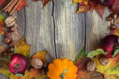 Autumn frame with pumpkins, leaves, apples and nuts Stock Photos