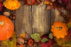 Autumn frame with pumpkins, leaves, apples and nuts Royalty Free Stock Photography