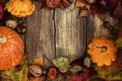 Autumn frame with pumpkins, leaves, apples and nuts Stock Photography