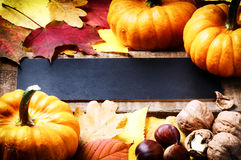 Autumn frame with pumpkins Stock Image