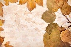 Autumn frame, space Stock Photo