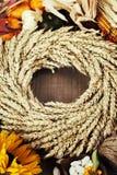 Autumn frame Stock Photography