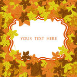 Autumn frame. Vector background. Vector illustration. Floral vector pattern. Fashion Graphic Design for your text. Bright colors l Royalty Free Stock Images