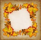Autumn frame on vintage background Royalty Free Stock Photo