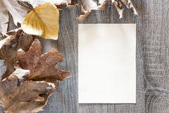 Autumn frame with vintage paper. On a wooden background Stock Images