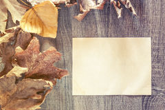 Autumn frame with vintage paper. On a wooden background Royalty Free Stock Photography